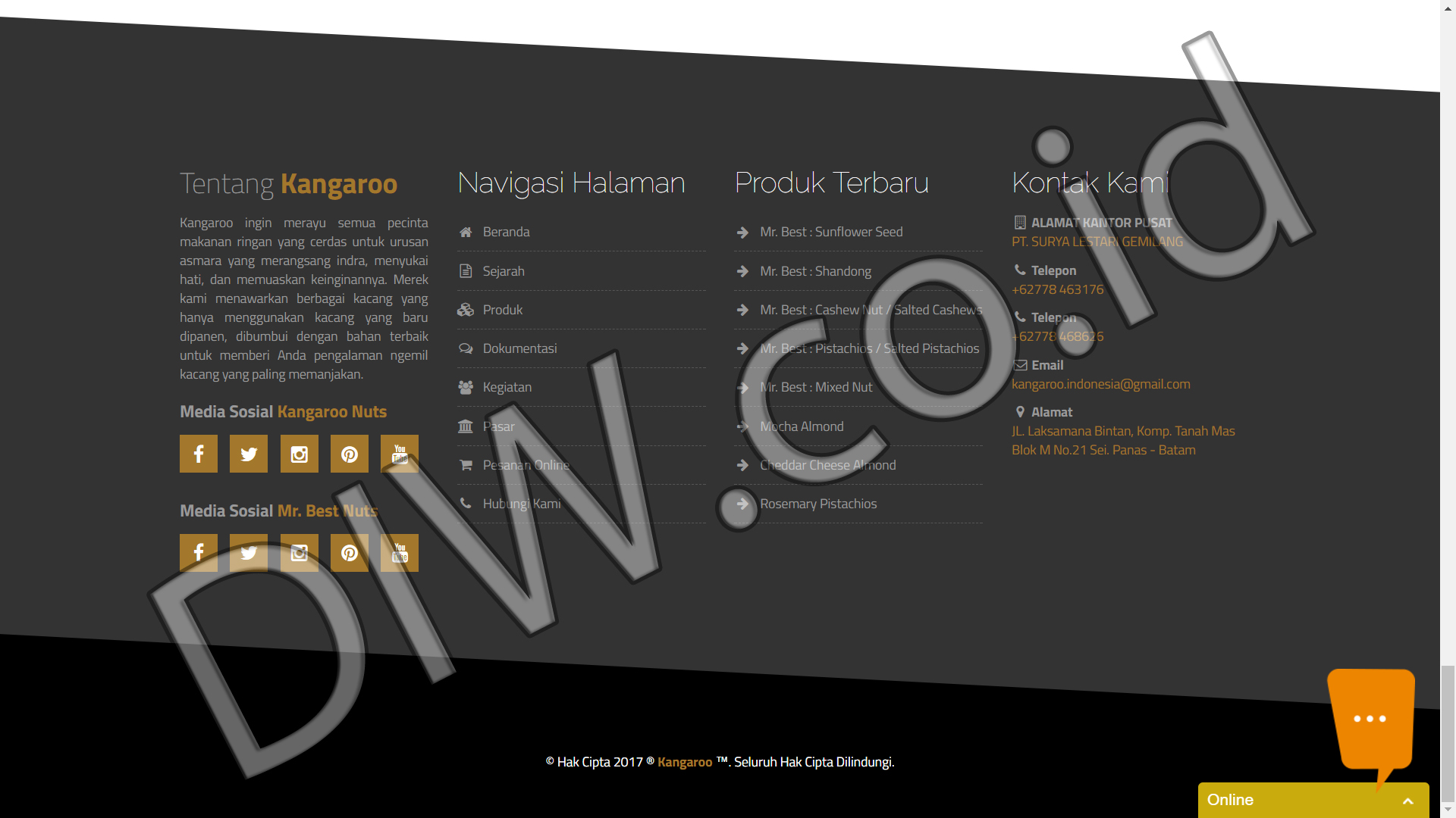 Portfolio 3 - Kangaroo - Andri Sunardi - Freelancer - Web Developer - CEO DIW.co.id
