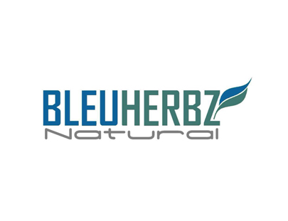 Logo Portfolio - Bleuherbz - Andri Sunardi - Freelancer - Web Developer - CEO DIW.co.id
